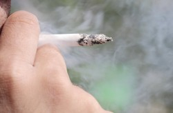 Study finds most expensive state to be a smoker